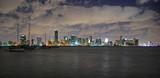 miami skyline at night poster