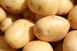 the white potato
