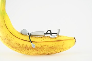 figure it lies on banana