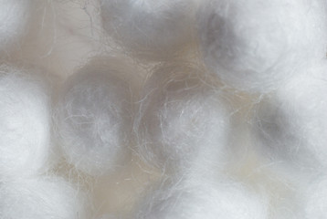 close up of cotton wool swabs