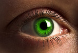 deep green human eye poster