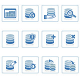 web icons : database management poster