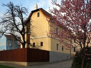 native house of  the sigmund freud