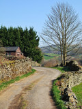country lane in the lyth valley poster