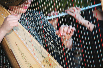 harp and flute performers at wedding