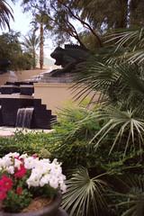 outdoor waterfall and garden scene