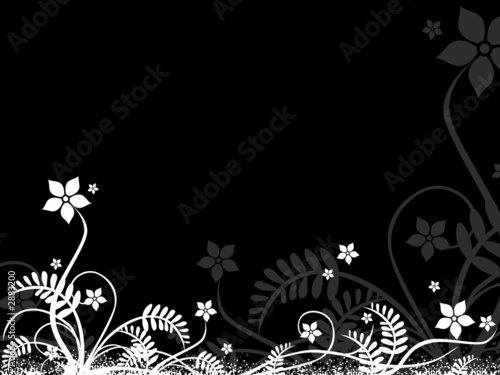 design flora  element in white and black