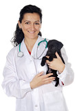 attractive lady veterinarian poster