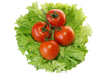 jack with tomatoes