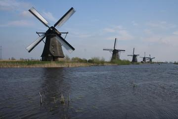 mills holland