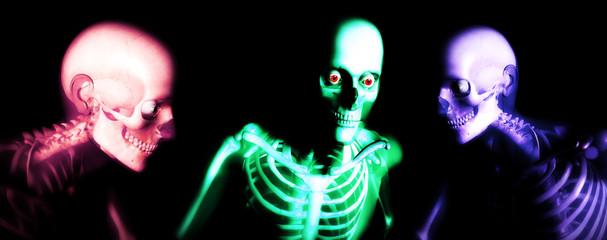 human bones 111
