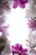 white flower frame over white background