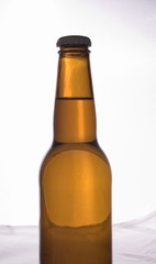 brown beer bottle isolated
