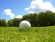 golf balle sur le fairway