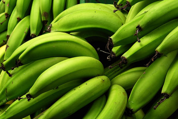 bananos platanos 4