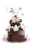 fancy chocolate celebration cake poster