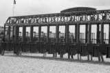 race track gates