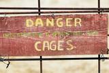 danger cages poster