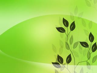 background plants