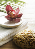 décor de massage zen poster