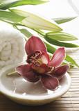 décor floral de massage poster