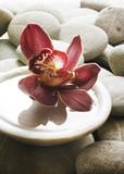 décor  floral zen poster
