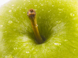 green apple stem poster
