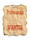 professionals wanted poster