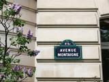 avenue montaigne et lilas poster