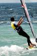 windsurfer 50