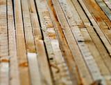 tavole di legno poster