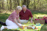 elderly couple pic-nic