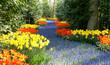 spring in garden