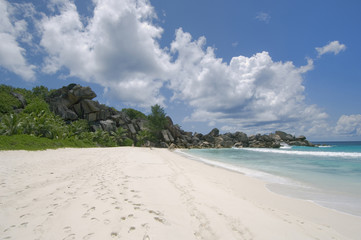 tropical white sand beach, la digue island, seyche