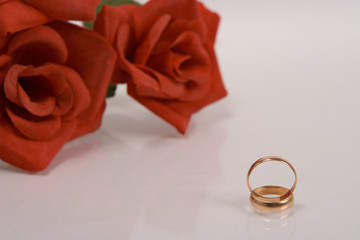 two wedding rings and red rose at the background