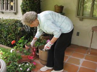 senior female gardening