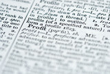 dictionary definition - profit poster