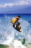 surfer in action - 2955267