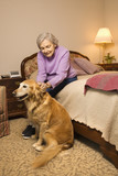 elderly caucasian woman in bedroom with dog. poster