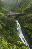 waterfall on the road to hana, hana highway, maui, hawaii, usa. poster