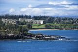 honolulu, hawaii coast. poster