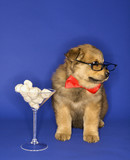 Puppy wearing eyeglasses and bowtie with martini glass full of b poster