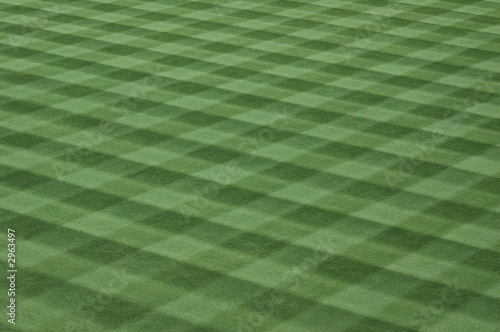 major league baseball field grass - 2963497