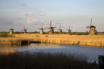 dutch windmills in kinderdijk 12