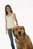 Dog on leash with adolescent girl. poster