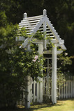 Arbor with rose bush and white picket fence. poster