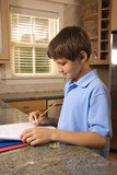 Boy doing homework at kitchen counter. poster
