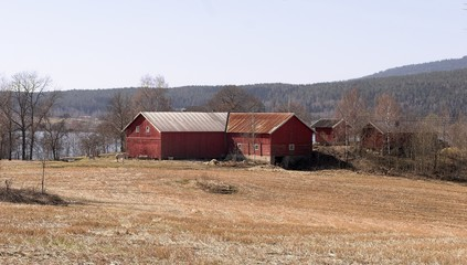 farm in the spring