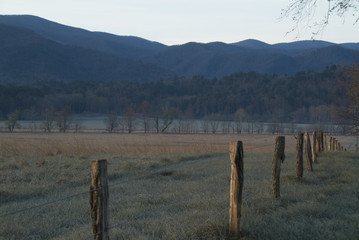 fence posts at sunrise