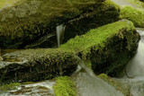 moss covered rocks and boulders in stream poster